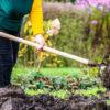 как улучшить глинистую почву
