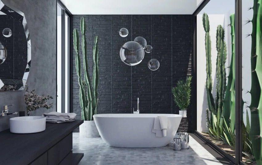 Высокие кактусы в ванной
