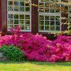 Важнейшие правила при оформлении садов