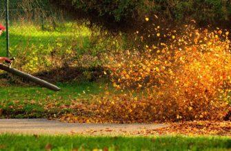 Листья в саду - стоит ли их собирать и что с ними делать?