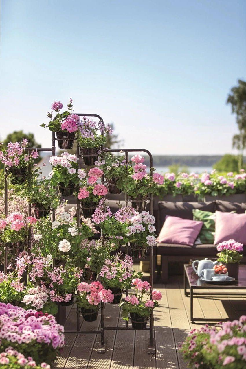 Розовый балкон, полный цветов