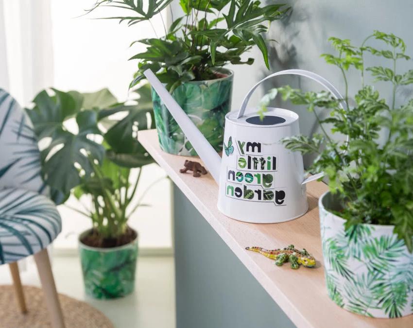 Как вырастить комнатные растения, чтобы они пышно росли? Лейка, горшки с листовым мотивом