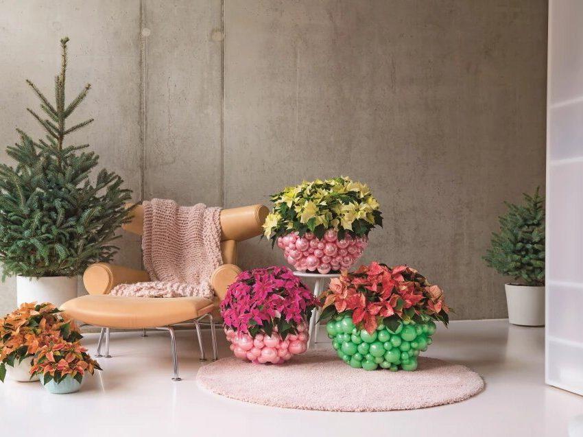 Красочные крышки цветочных горшков