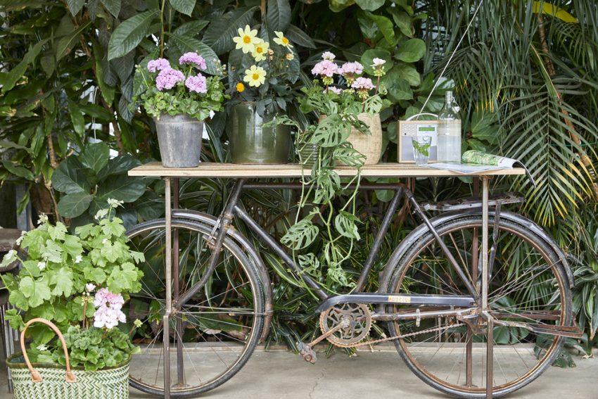 цветочная композиция на велосипеде