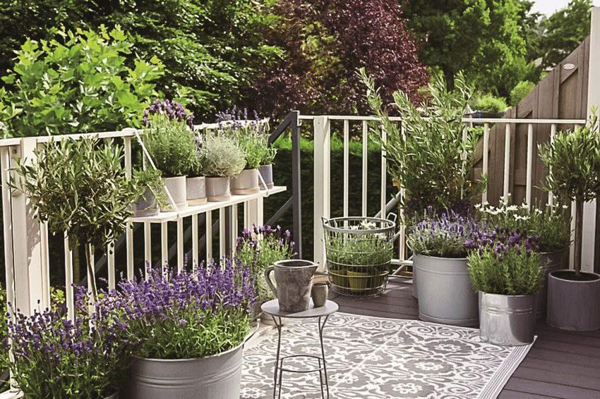 Лаванда на балконе, бело-серый ковер, маленький круглый стол, кувшин, большие металлические крышки для цветочных горшков.