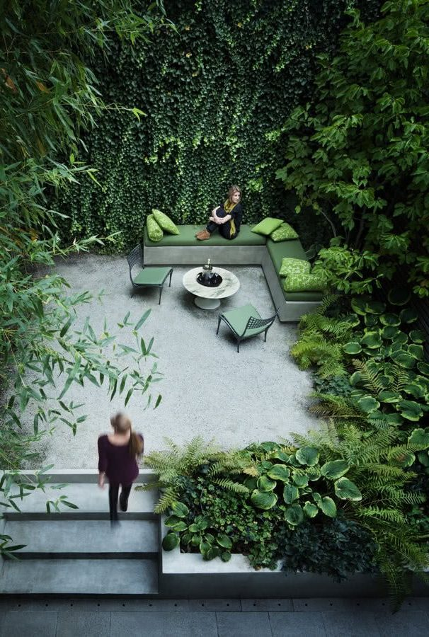Зелень в саду