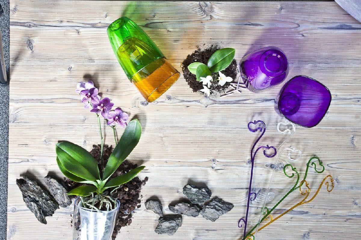 Аксессуары для выращивания орхидей